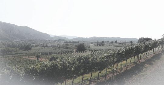 Franca-Contea